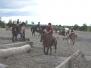 Cours de saut IENA - Groupe 3 - 14 août 2014